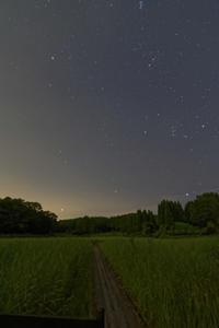 夜遊び - katsuのヘタッピ風景