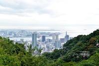神戸布引ハーブ園 - 高原に行きたい