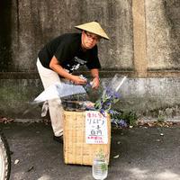 道の花のような 加茂大橋西詰の花売り人 - 加藤わこ三度笠書簡