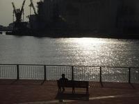 千葉港公園 - ネコと裏山日記