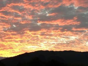 sunset color - feel groovy