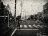 """get wet in the rain"" - ~まきち写真工房~"