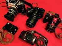 私のカメラたち - 日々の写真