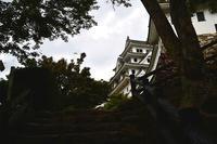 秋灯の月 寫誌 ⑥ 旅の途中は郡上八幡 - le fotografie di digit@l