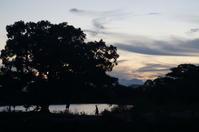 夕暮れに江津湖へ with SMC PENTAX 55mm 1:1.8 - 勝手気ままな写真生活。