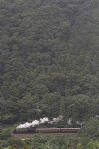 濃緑の山に白煙 - 2017年初秋・秩父 - - ねこの撮った汽車
