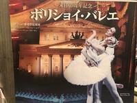 ボリショイ・バレエ 「白鳥の湖」(東京文化会館) - いずのすけのワインライフ