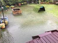 台風直撃は久しぶりだけど、県内でも大雨、こんなに被害が出るなんて。。。 - さくらおばちゃんの趣味悠遊