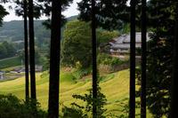 初秋 実りの気配 - katsuのヘタッピ風景