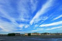 台風一過青空ヒマワリコスモス・・・朝散歩は見過ごせないシ~ンが一杯だ♪ - 『私のデジタル写真眼』