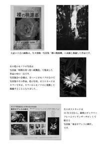 日本写真協会 - 写真を想う日日