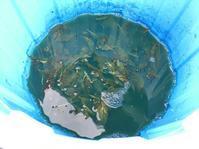 泥藍作り その② - 『かくや』 つまみ細工のアクセサリー