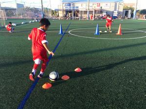 可視化 - Perugia Calcio Japan Official School Blog