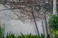 壁画 - ひろままのフォトブログ