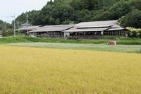 蕎麦の里 - katsuのヘタッピ風景
