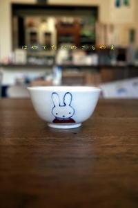 AIちゃんのお茶碗 - 疾風谷の皿山…陶芸とオートバイと古伊万里と