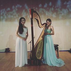 大人のためのプラネタリウム - harpe