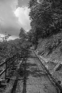 上り坂 - 気ままにお散歩