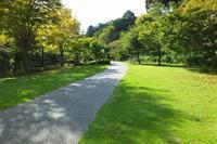 水戸の公園で散策 (6) もみじ谷で見つけたいろいろ - ぶらり散歩 ~四季折々フォト日記~