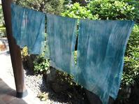藍の生葉染め(2・3回目) - 『かくや』 つまみ細工のアクセサリー