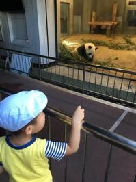 上野動物園^_^v - ~おざなりholiday's^^v~ <フィルムカメラの写真のブログ>
