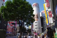 9月19日(火)の109前交差点 - でじたる渋谷NEWS