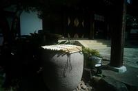 世田谷松陰神社 - 写真日記