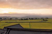 黄金色の朝 - 京の彩紋様++