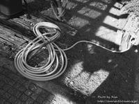 行方不明 - Risaのフォトログ