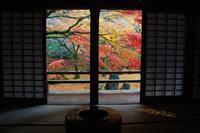 光明寺の紅葉 - 信仙のブログ