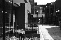 青山の街角--4 - くにちゃん3@撮影散歩