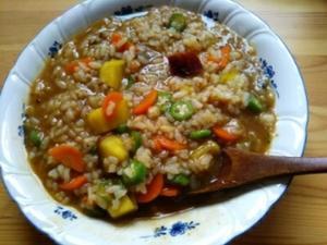 なんちゃって雑炊♪・・・独り暮しの頃の食事 - 化学物質過敏症・風のたより2