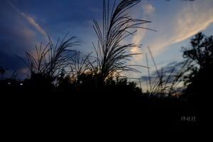 初秋の夕暮れ -