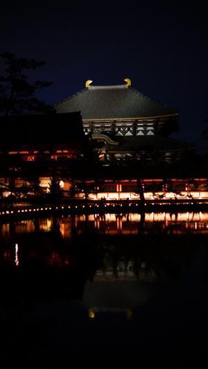 東大寺 - belakangan ini