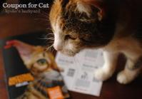 猫のためのクーポン♪ - Kyoko's Backyard ~アメリカで田舎暮らし~
