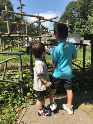 多摩動物公園へ。 - 奥様への細道・・・