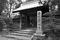 鎌倉散歩 - ようこそ風の散歩へ