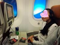 タイ航空 ♡空の旅♡ - シングル母さん家を買う**外国の暮らし**