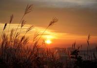 朝のひかり 6 - 源爺の写真館