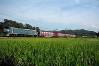 素の30号機。 - 山陽路を往く列車たち