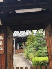秋の花 - 京都西陣 小さな暮らし