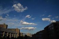 秋晴れのいい天気 - kenのデジカメライフ