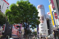 9月21日(木)の109前交差点 - でじたる渋谷NEWS