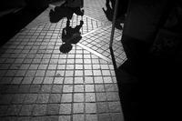 光りだけを見つめて歩いていると、N潟もまんざらじゃないと思う時があるわけよ(^_-)-☆ - Yoshi-A の写真の楽しみ