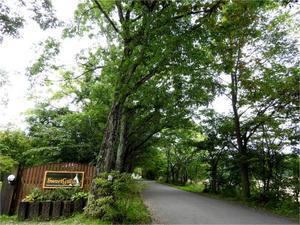 週末の天気と気温(9月4週目) - 北軽井沢スウィートグラス