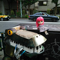 リリカちゃん、ロボット恐竜とツーショット そして新しい地図の事 - T's Photo Diary2(Grass Field*)