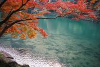 京都の秋 - 信仙のブログ