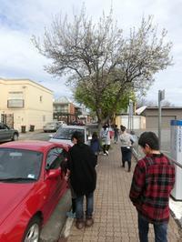 教会学校の子どもたちとお散歩。 - アデレード日本人教会(JCFA)にようこそ♪