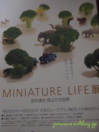 見立て写真家展覧会-「Miniature Life」 - アメリカ南部の風にふかれて