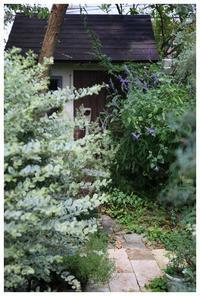お庭造りには最適の季節がやってきますね。 - natu     * 素敵なナチュラルガーデンから~*     福岡でガーデンデザイン、庭造り、外構工事をしてます